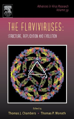 9780120398591: The Flaviviruses: Structure, Replication and Evolution, Volume 59 (Advances in Virus Research)