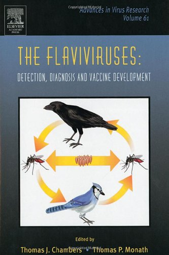 9780120398614: The Flaviviruses: Detection, Diagnosis and Vaccine Development, Volume 61 (Advances in Virus Research)