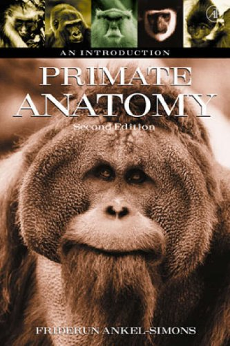 9780120586707: Primate Anatomy, Second Edition: An Introduction