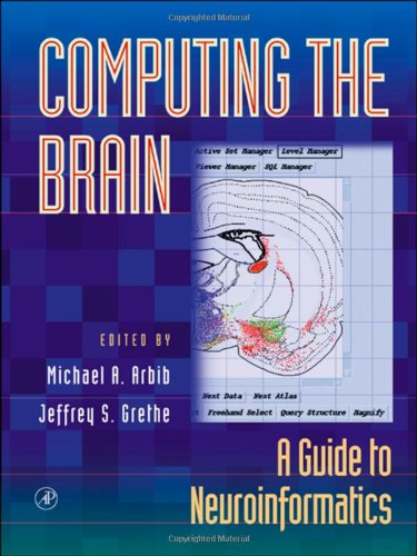 9780120597819: Computing the Brain: A Guide to Neuroinformatics