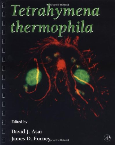 9780120645251: Tetrahymena Thermophila, Volume 62 (Methods in Cell Biology Vol 62)