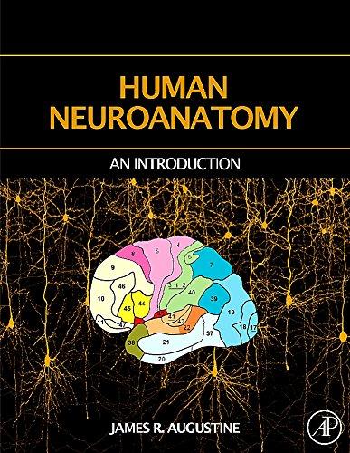 9780120682515: Human Neuroanatomy