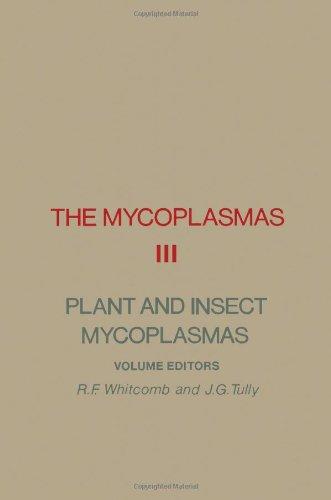 9780120784035: The Mycoplasmas