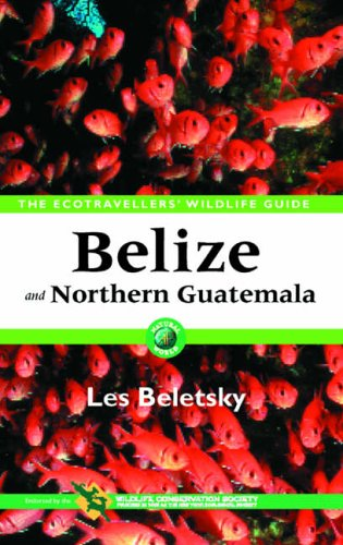 9780120848119: Belize and Northern Guatemala: Ecotraveller's Wildlife Guide
