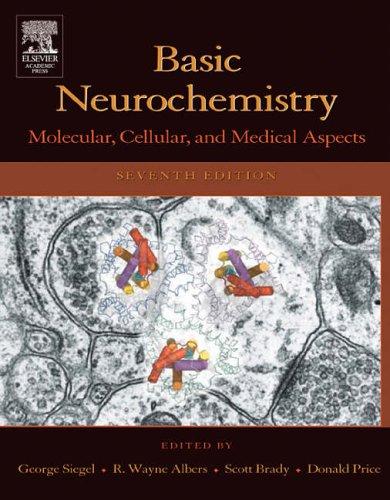 9780120883974: Basic Neurochemistry: Molecular, Cellular, and Medical Aspects