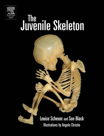 9780121028213: The Juvenile Skeleton