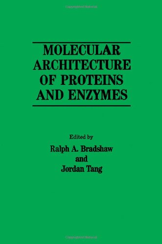 9780121245702: Molecular Architec Prot Emzym