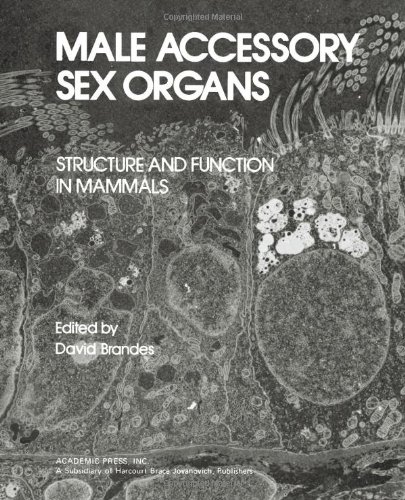 9780121256500: Male Accessory Sex Organs: Structure and Function in Mammals