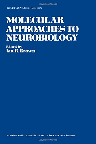 9780121370206: Molecular Approaches to Neurobiology (Cell Biology)