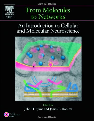9780121486600: From Molecules to Networks: An Introduction to Cellular and Molecular Neuroscience