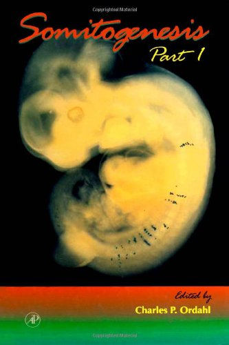 9780121531478: Somitogenesis, Part I, Volume 47 (Current Topics in Developmental Biology)