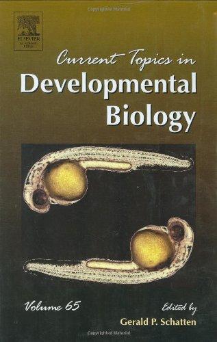 9780121531652: Current Topics in Developmental Biology, Volume 65