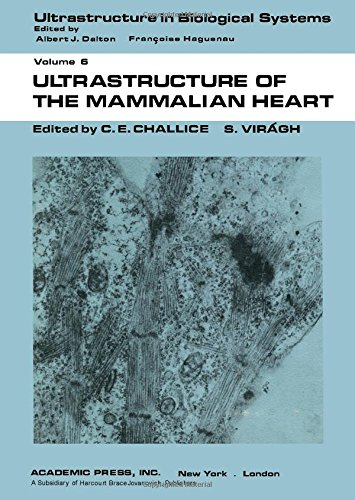 9780121700508: Ultrastructure of the Mammalian Heart (Ultrastructure in Biological Systems)