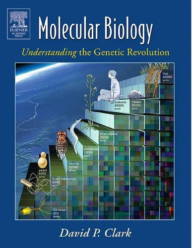 Molecular Biology: Understanding the Genetic Revolution: David P. Clark