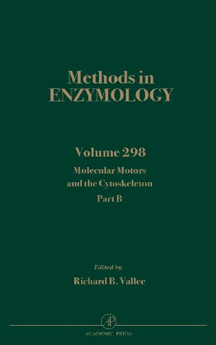9780121821999: Molecular Motors and the Cytoskeleton, Part B: Volume 298 (Methods in Enzymology)