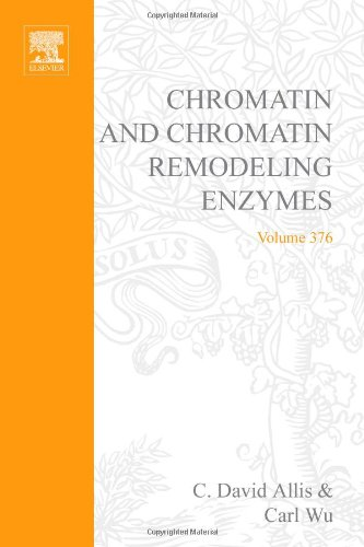 9780121827809: Chromatin and Chromatin Remodeling Enzymes, Part B, Volume 376 (Methods in Enzymology)