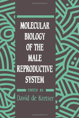 9780122090301: Molecular Biology of the Male Reproductive System