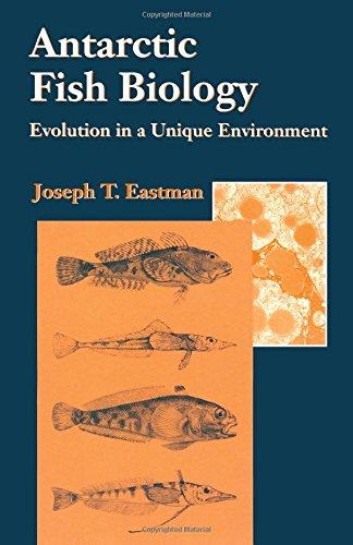 9780122281402: Antarctic Fish Biology: Evolution in a Unique Environment