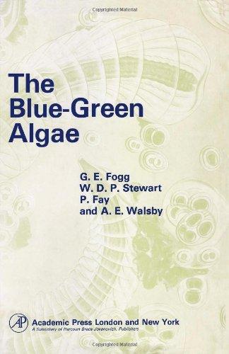 9780122616501: Blue-green Algae