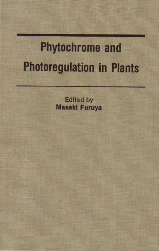 9780122699702: Phytochrome and Photoregulation in Plants