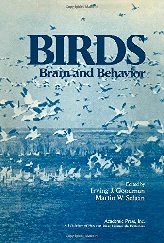 9780122903502: Birds: Brain and Behaviour