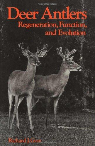 9780122930805: Deer Antlers: Regeneration, Function and Evolution