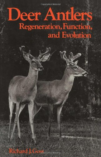 9780122930805: Deer Antlers: Regeneration, Function and Evolution