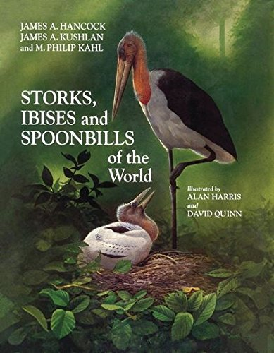 9780123227300: Storks, Ibises and Spoonbills of the World (Poyser Natural History)
