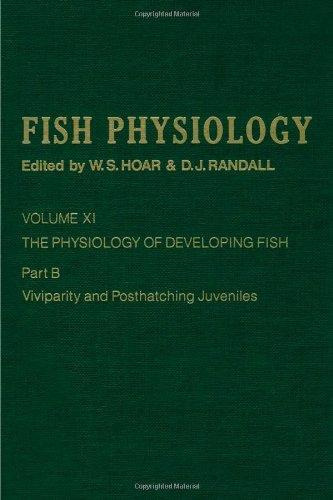 9780123504340: The Physiology of Developing Fish: Viviparity and Posthatching Juveniles, Volume 11B: Volume 11B: The Physiology of Developing Fish: Viviparity and Posthatching Juveniles (Fish Physiology)