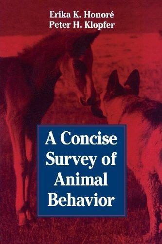 9780123550651: A Concise Survey of Animal Behavior
