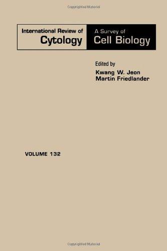 9780123645326: INTERNATIONAL REVIEW OF CYTOLOGY V132, Volume 132 (International Review of Cell and Molecular Biology)
