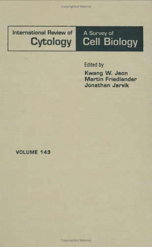 9780123645463: International Review of Cytology, Volume 143 (International Review of Cell and Molecular Biology)