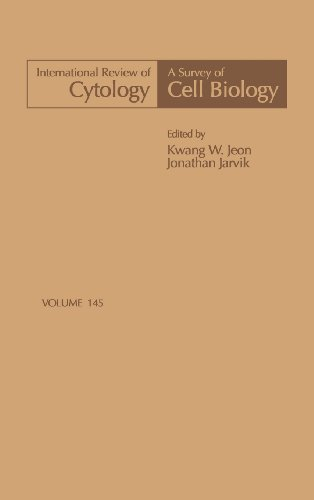 9780123645487: International Review of Cytology, Volume 145 (International Review of Cell & Molecular Biology)