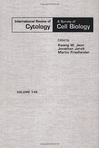 9780123645494: INTERNATIONAL REVIEW OF CYTOLOGY V146, Volume 146 (International Review of Cell and Molecular Biology)
