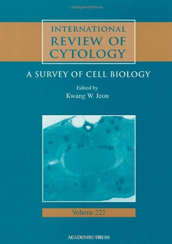 9780123646262: International Review of Cytology, Volume 222 (International Review of Cell and Molecular Biology)