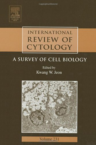 9780123646354: International Review of Cytology, Volume 231: A Survey of Cell Biology (International Review of Cell and Molecular Biology)