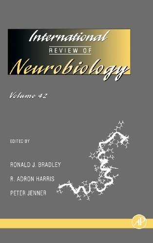 9780123668424: International Review of Neurobiology: 42