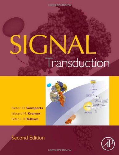 9780123694416: Signal Transduction, Second Edition