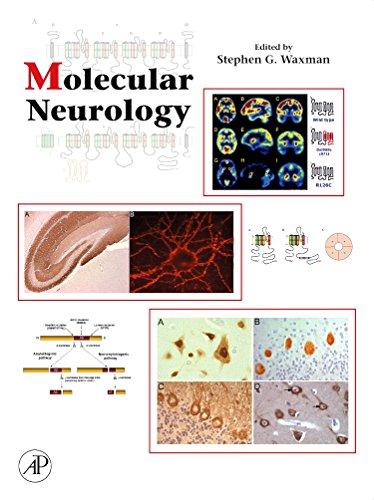 9780123695093: Molecular Neurology