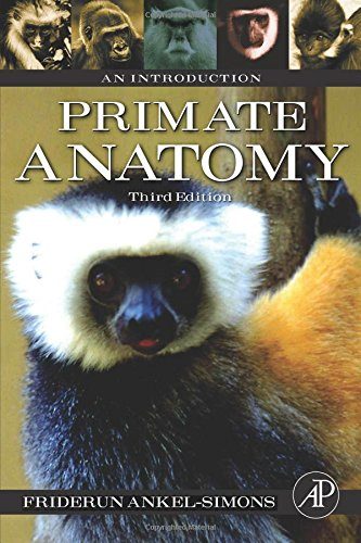 9780123725769: Primate Anatomy, Third Edition: An Introduction