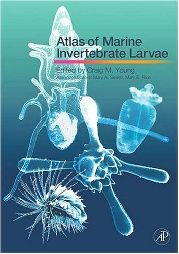 9780123736086: Atlas of Marine Invertebrate Larvae