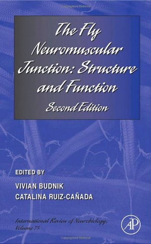 9780123736130: The Fly Neuromuscular Junction:  Structure and Function, Volume 75: Second Edition (International Review of Neurobiology.)