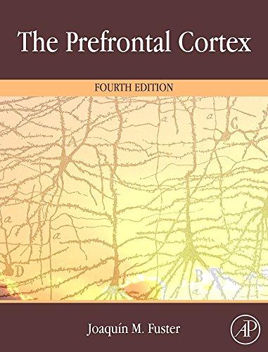 9780123736444: The Prefrontal Cortex