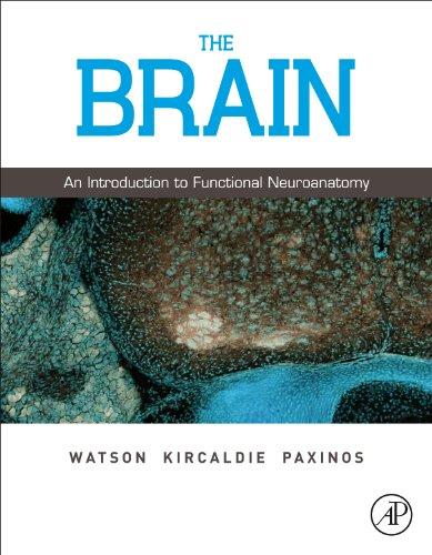 9780123738899: The Brain: An Introduction to Functional Neuroanatomy
