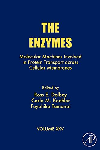 9780123739162: The Enzymes, Volume 25: Molecular Machines Involved in Protein Transport across Cellular Membranes