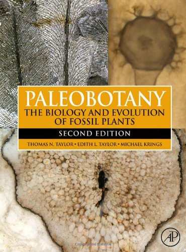 9780123739728: Paleobotany, Second Edition: The Biology and Evolution of Fossil Plants