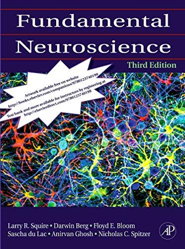 9780123740199: Fundamental Neuroscience, Third Edition