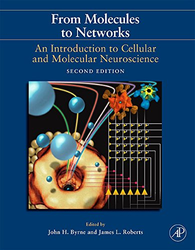 9780123741325: From Molecules to Networks, Second Edition: An Introduction to Cellular and Molecular Neuroscience