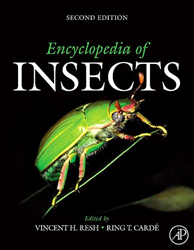 9780123741448: Encyclopedia of Insects, Second Edition