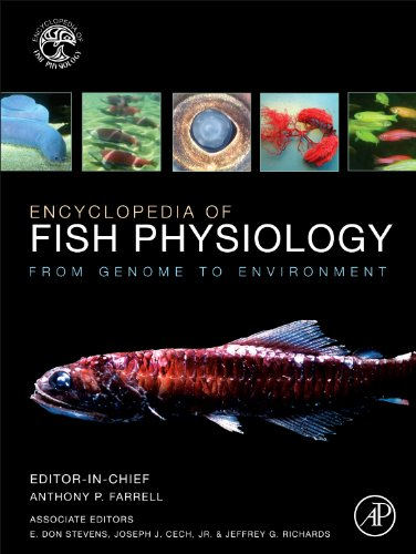 Encyclopedia of Fish Physiology: From Genome to Environment (Hardback)